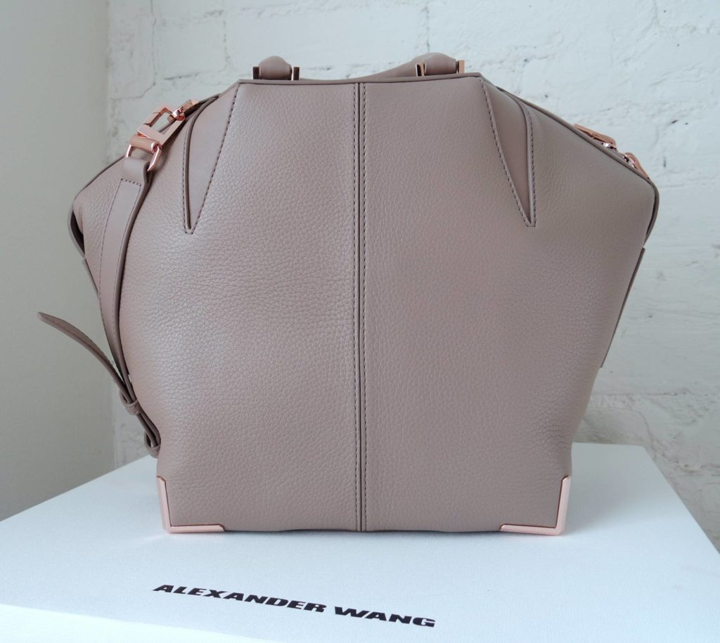 Bag Reveal! Alexander Wang Small Emile Tote